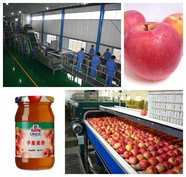 Small Capacity Apple Juice Processing Plant SS304 Material Beverage Processing Line