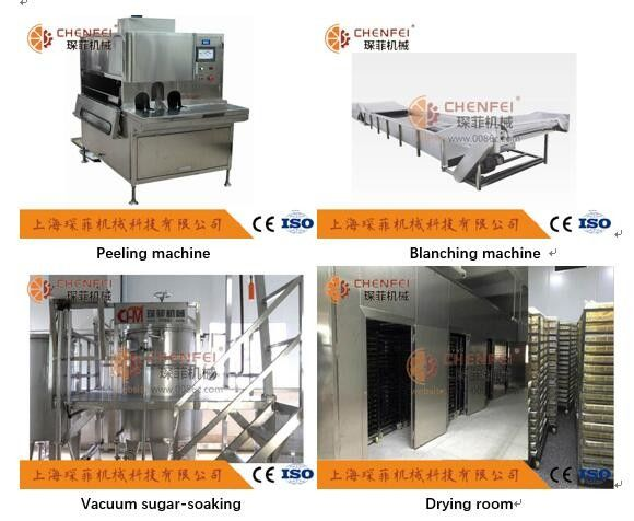 Automatic Kiwi Fruit Juice Production Line 304 Stainless Steel Material