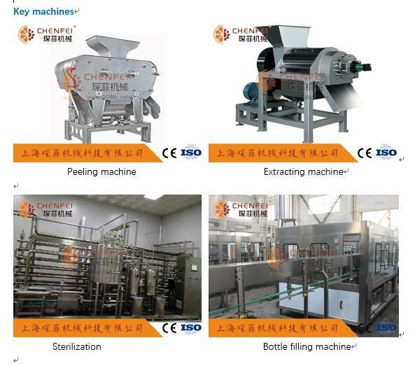 Coustom Pomegranate Juice Production Line 5T / H ISO9001 Certificate